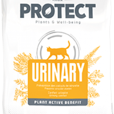 Protect Urinary Chat